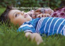 adobe photoshop element 2018