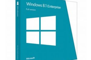 windows_8.1_enterprise_2